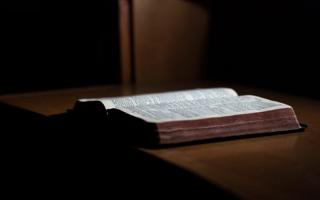 Človek – služobník – kresťan vie: Hospodinova je zem i to, čo ju napĺňa